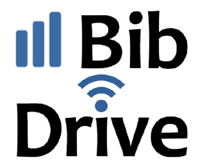 Logo Bib Drive